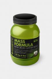 Mass Formula Reinforced Gainer Blend
