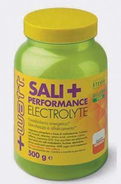 Sali+ Performance Electrolyte arancia 500